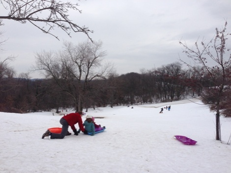 Sled Riding in Frick Park