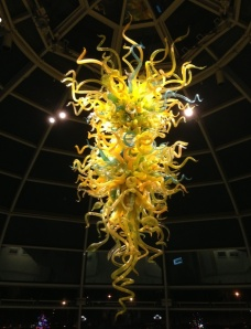 Dale Chihuly chandalier in Phipps' Welcome Center